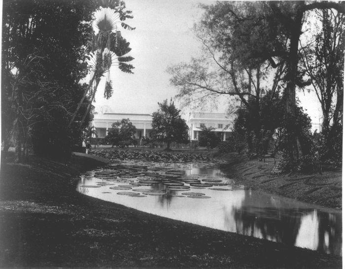 File:COLLECTIE TROPENMUSEUM Een vijver met Victoria Regia in 's Lands Plantentuin bij het paleis van de Gouverneur-Generaal te Buitenzorg TMnr 60009504.jpg
