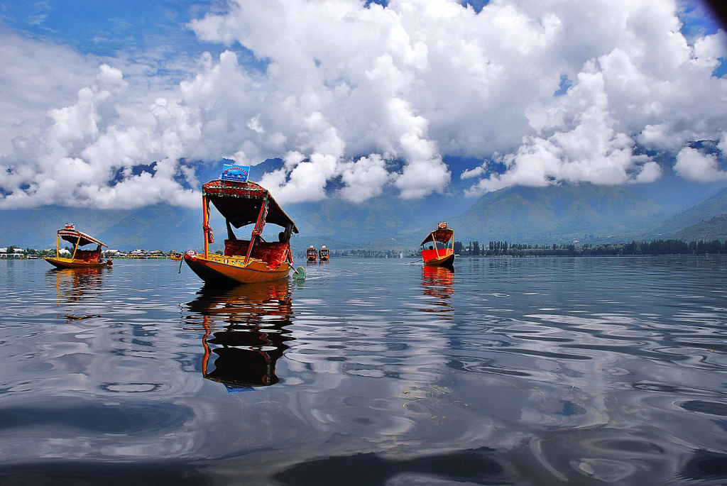 Image result for dal lake