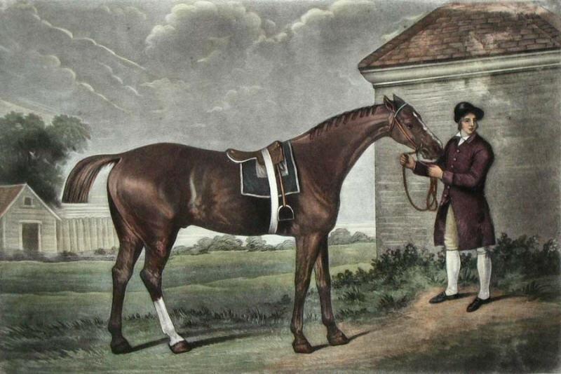 Historique des courses (court survol) et de la Triple Couronne américaine Eclipse%28horse%29