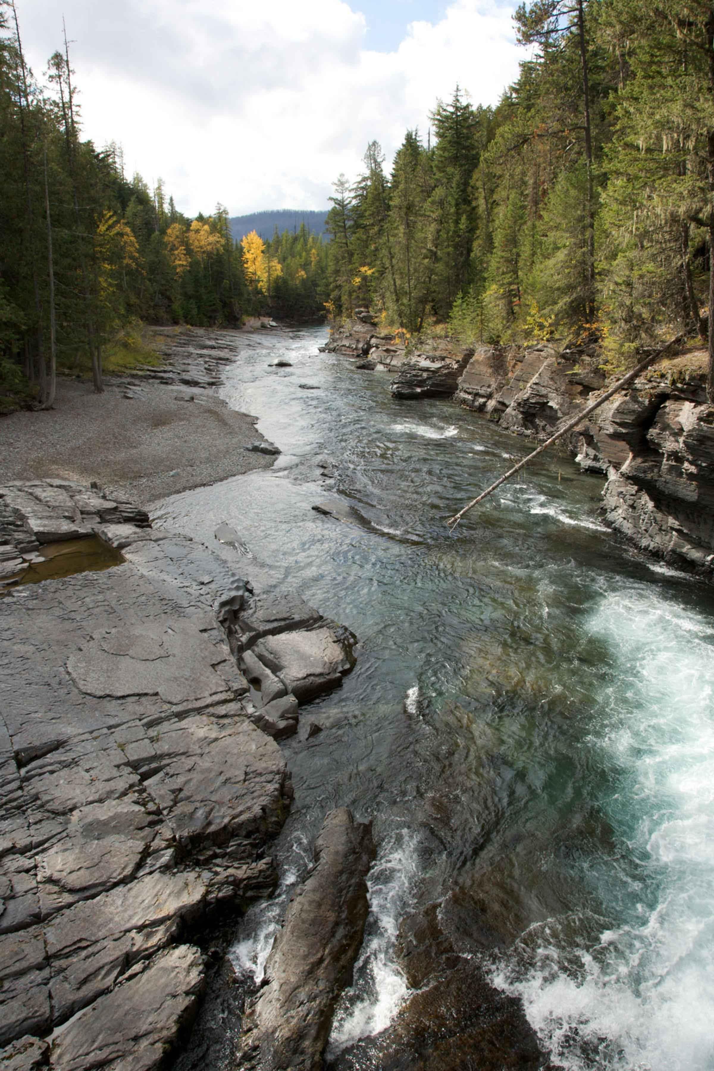Ekosystém horskej rieky