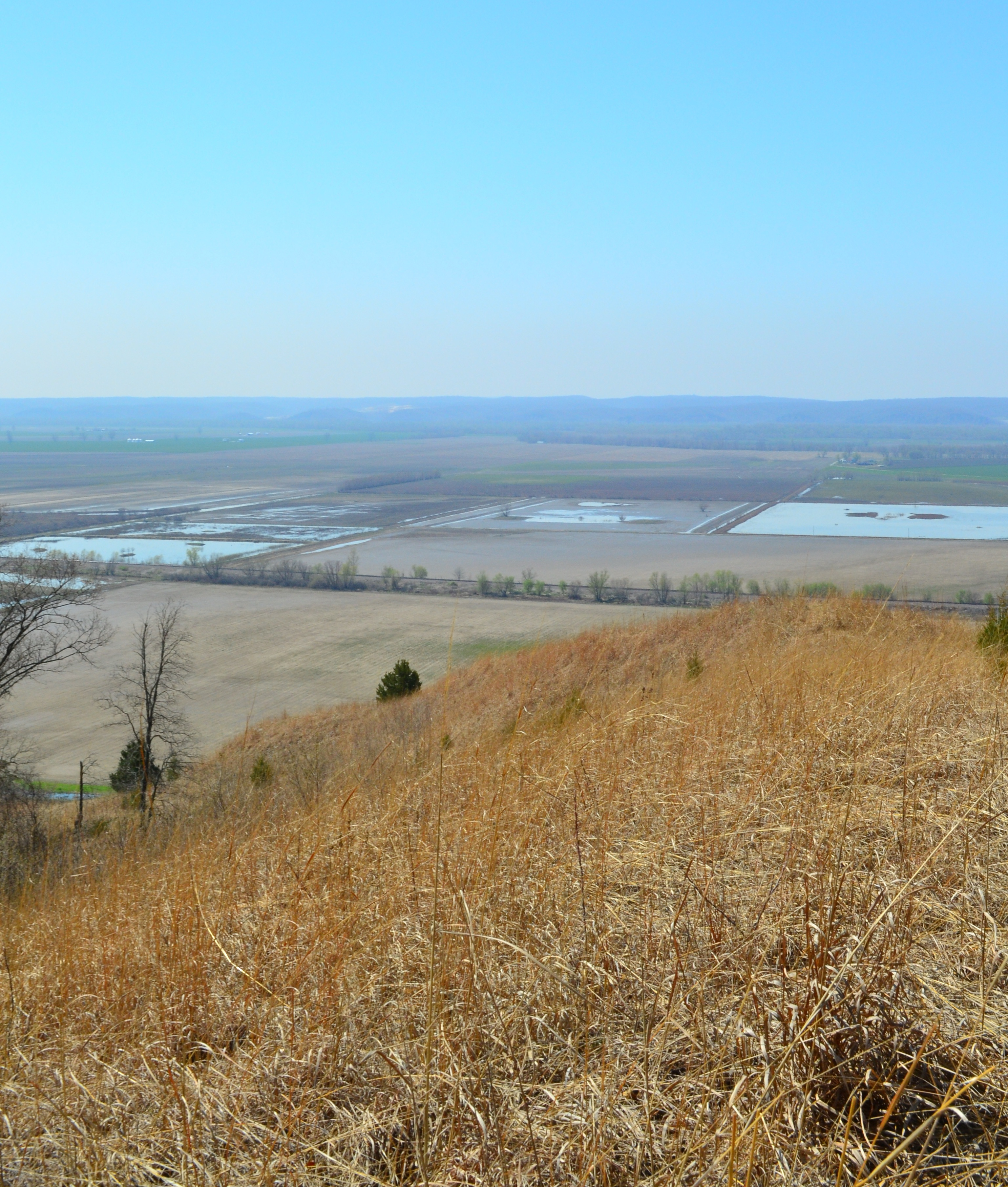 Fults Hill Prairie State Natural Area Wikipedia