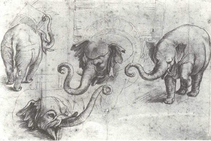 Vier Studien von Hanno. Oxford, Ashmolean Museum.