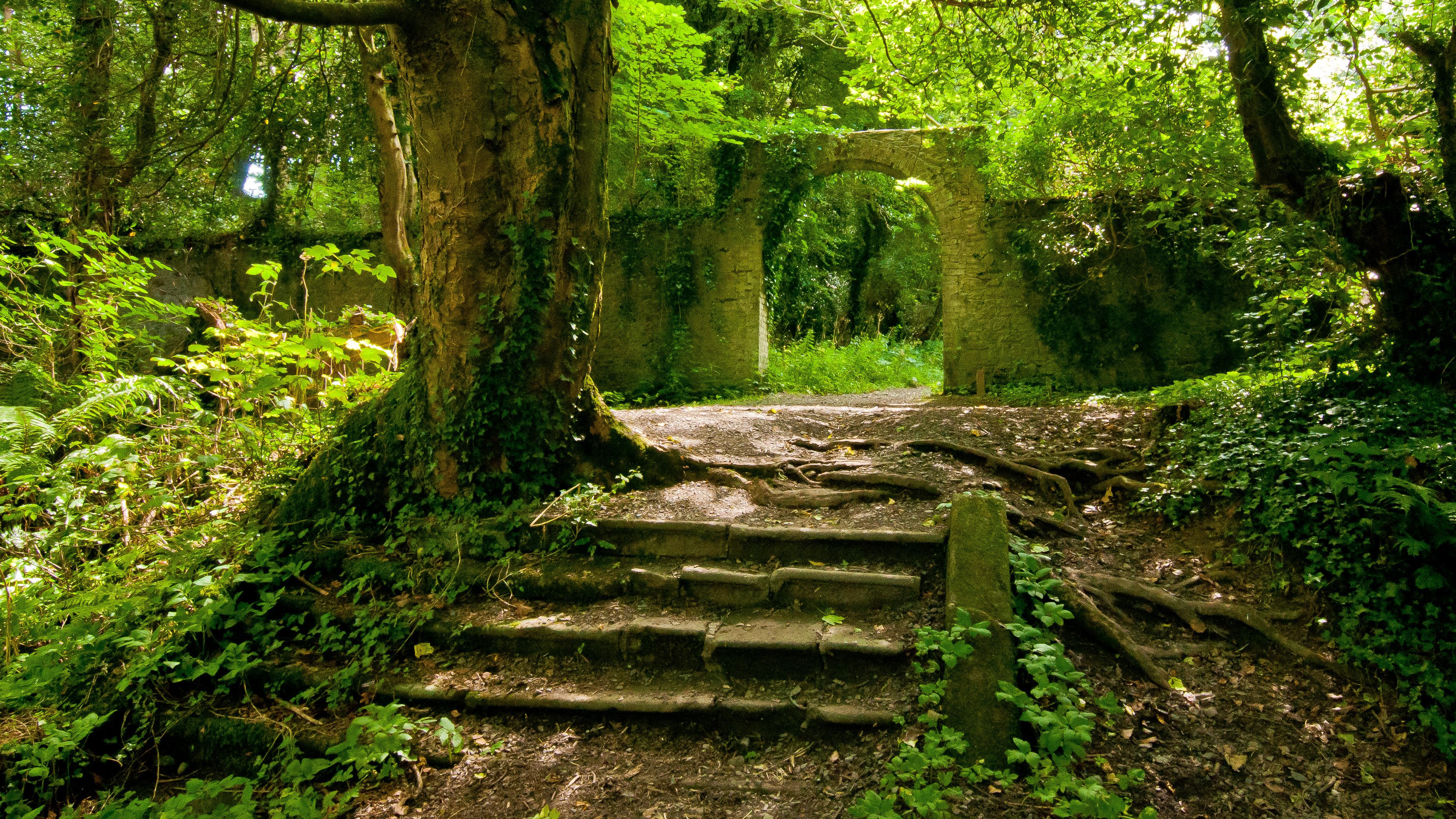 Charming Churches In Sherwood Or #1: Killakee_Estate_Ruined_Garden_(Summer).jpg