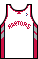 Kit body torontoraptors 03home.png