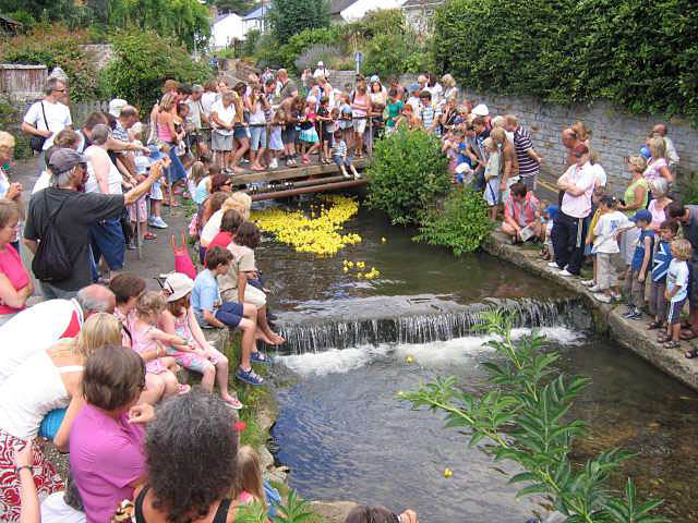 Lyme Regis Duck Race - geograph.org.uk - 385391