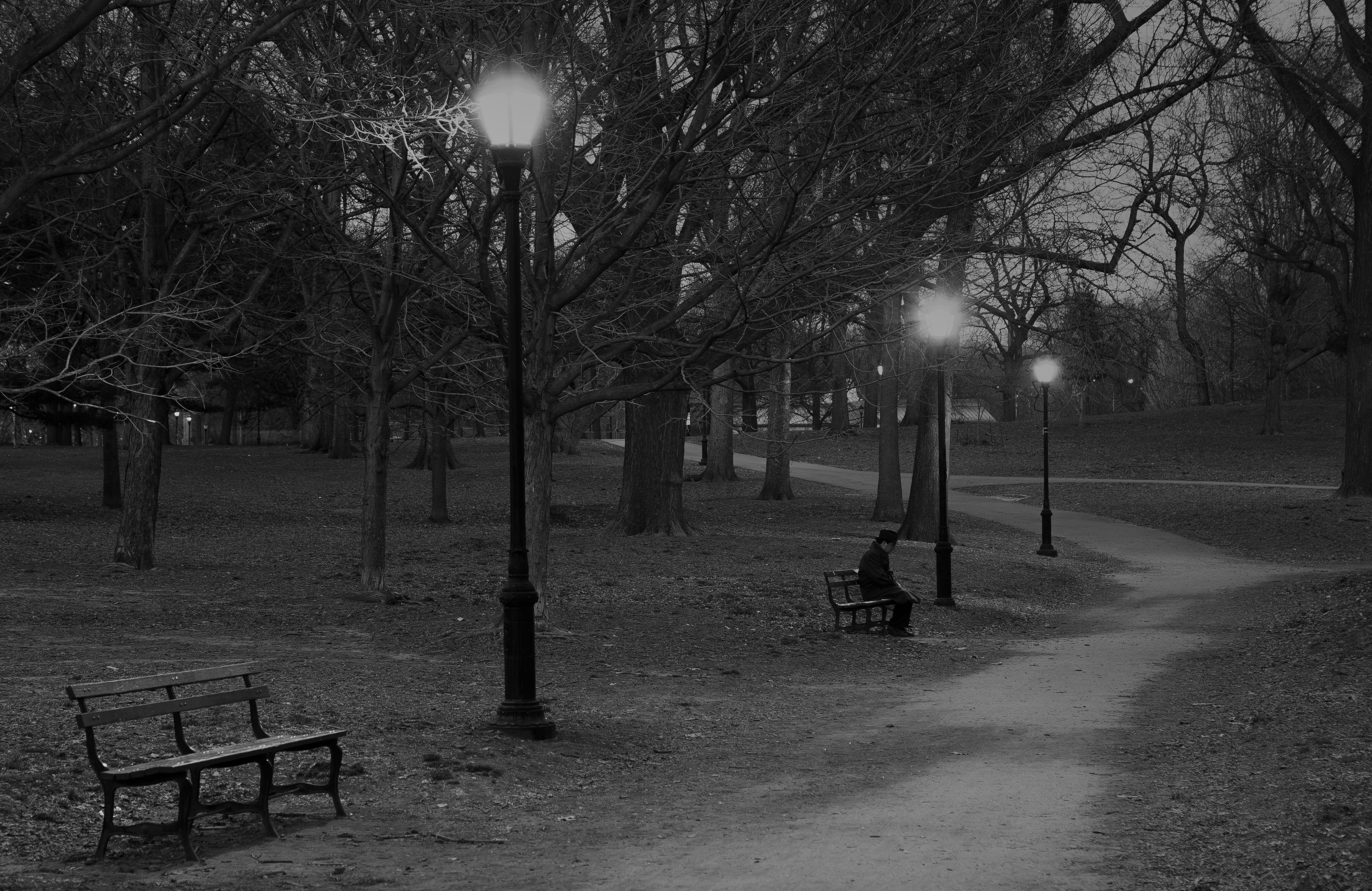 file man sitting alone in park jpg wikimedia commons