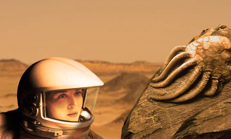 Why should we go to Mars?