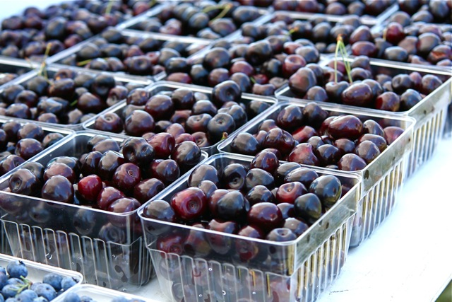 File:Michigan Cherries, 2009 July.jpg