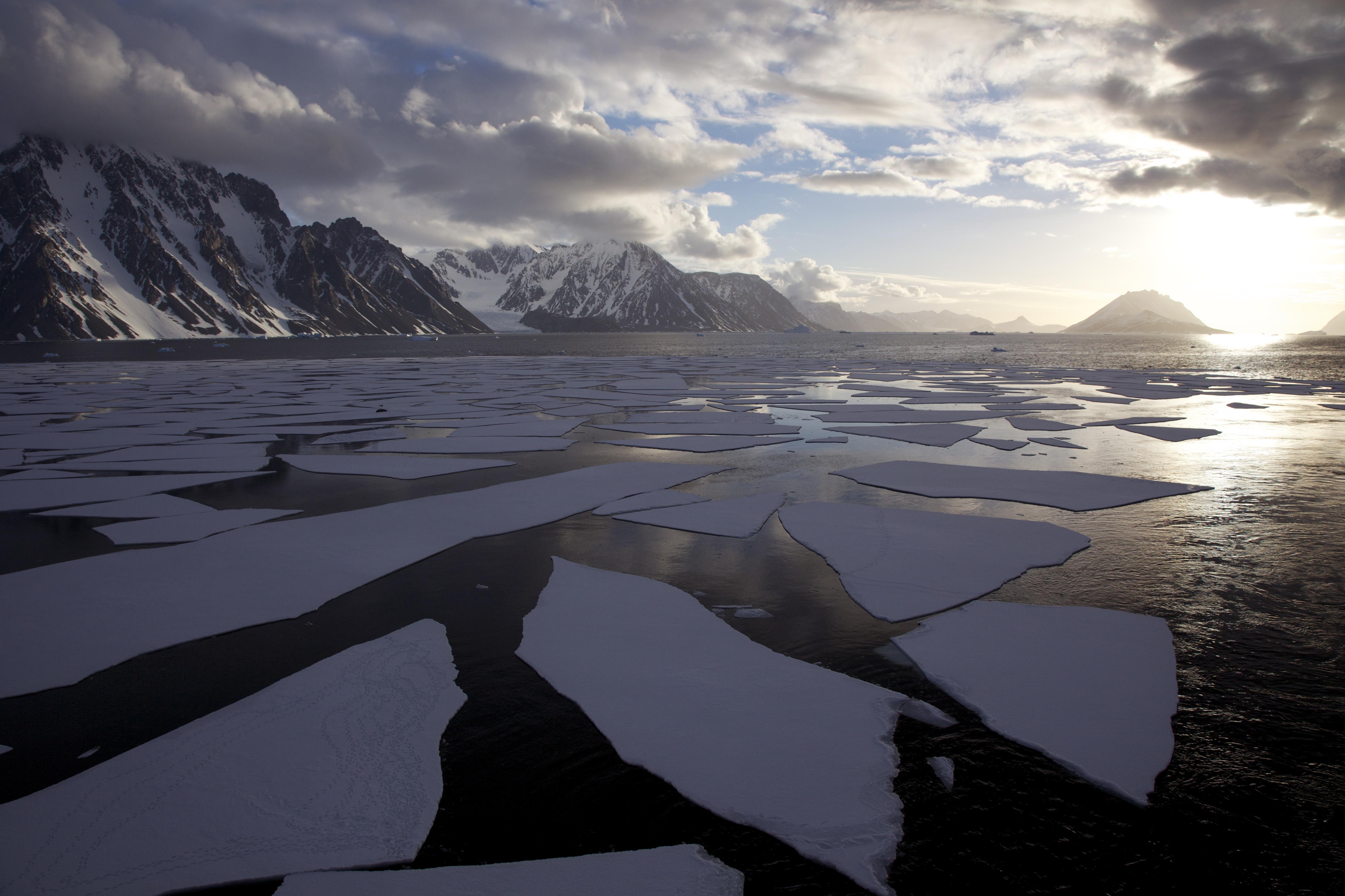 environmental impact of tourism on antarctica essay