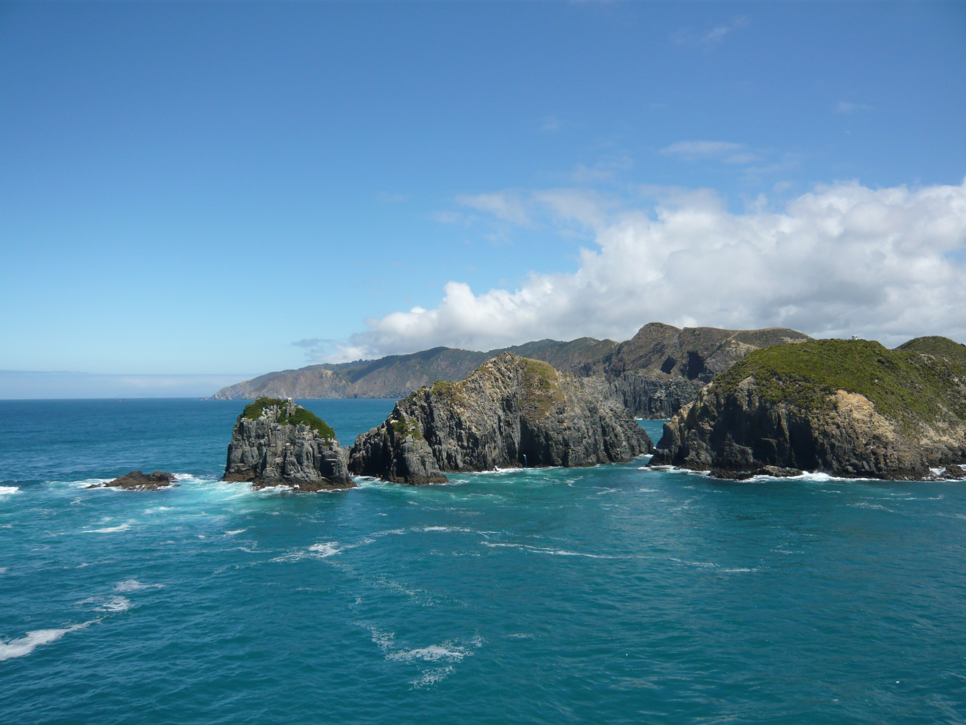 Bay of Islands, New Zealand  № 624973  скачать