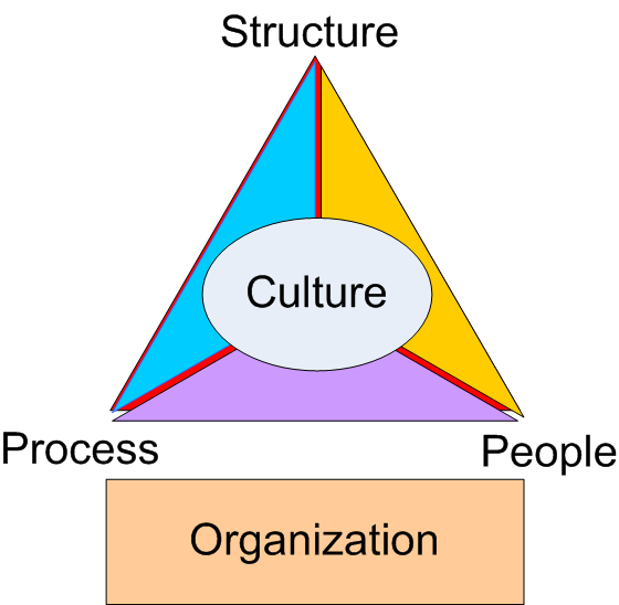 relationship between organisational structure and process