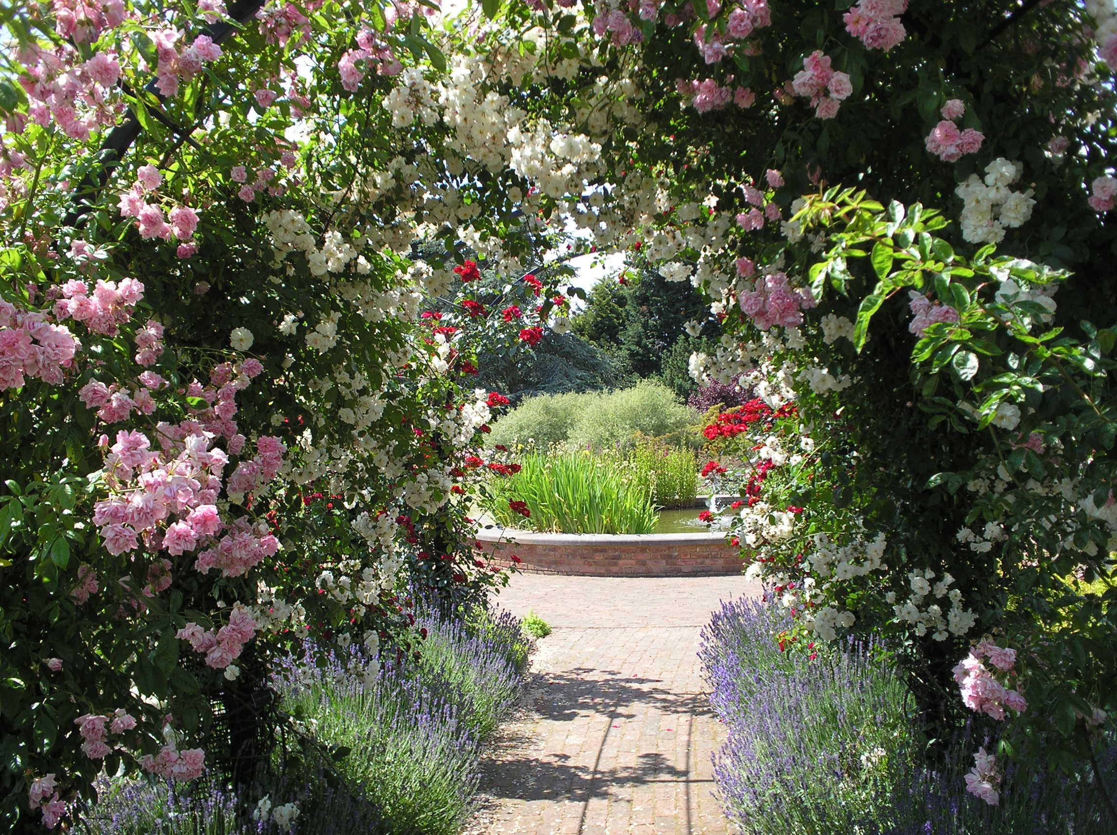 File Rose Arch At Rnrs Gardens Of The Rose Jpg Wikimedia