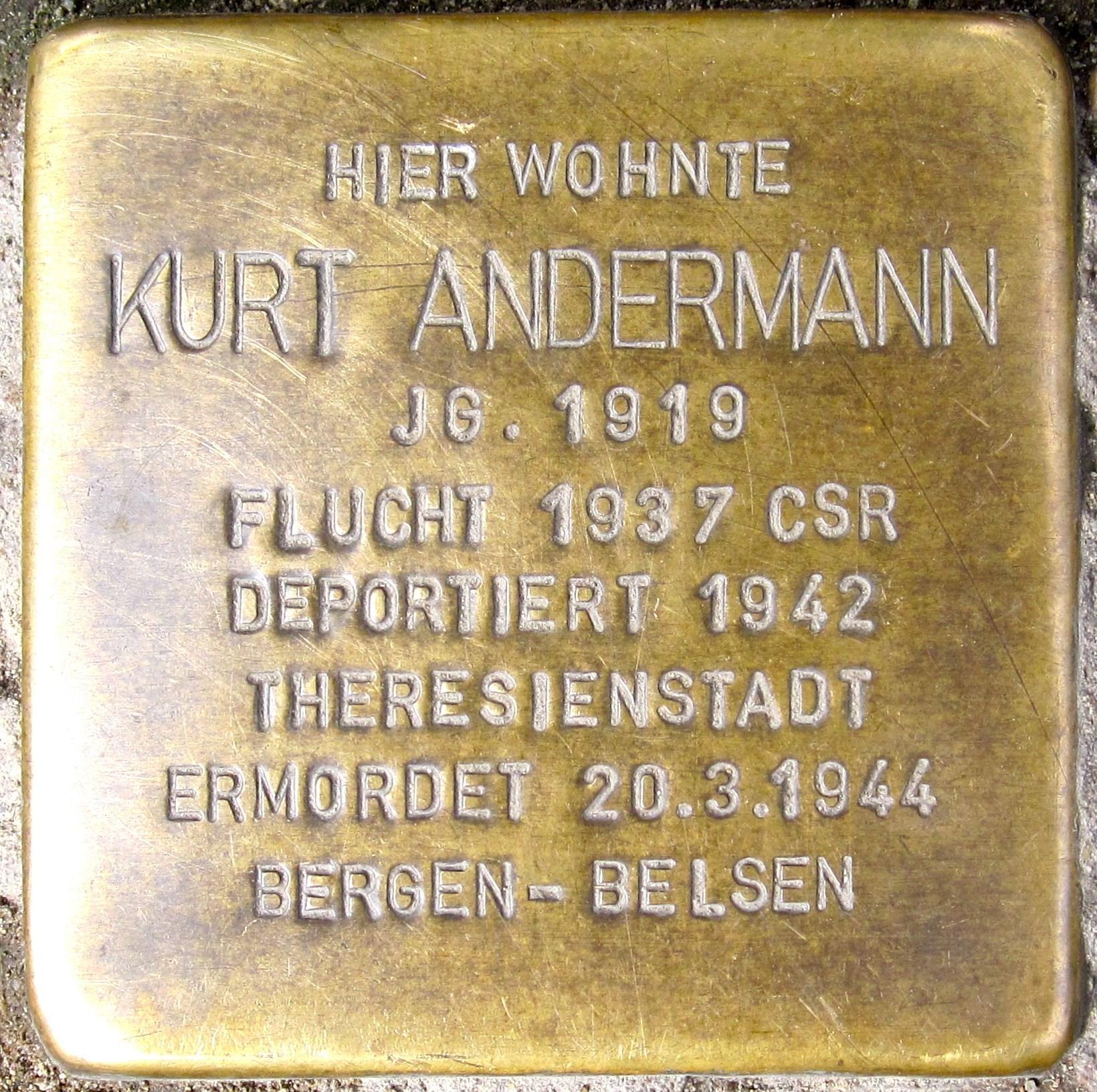 http://upload.wikimedia.org/wikipedia/commons/1/1d/Stolperstein_Andermann_BS.jpg