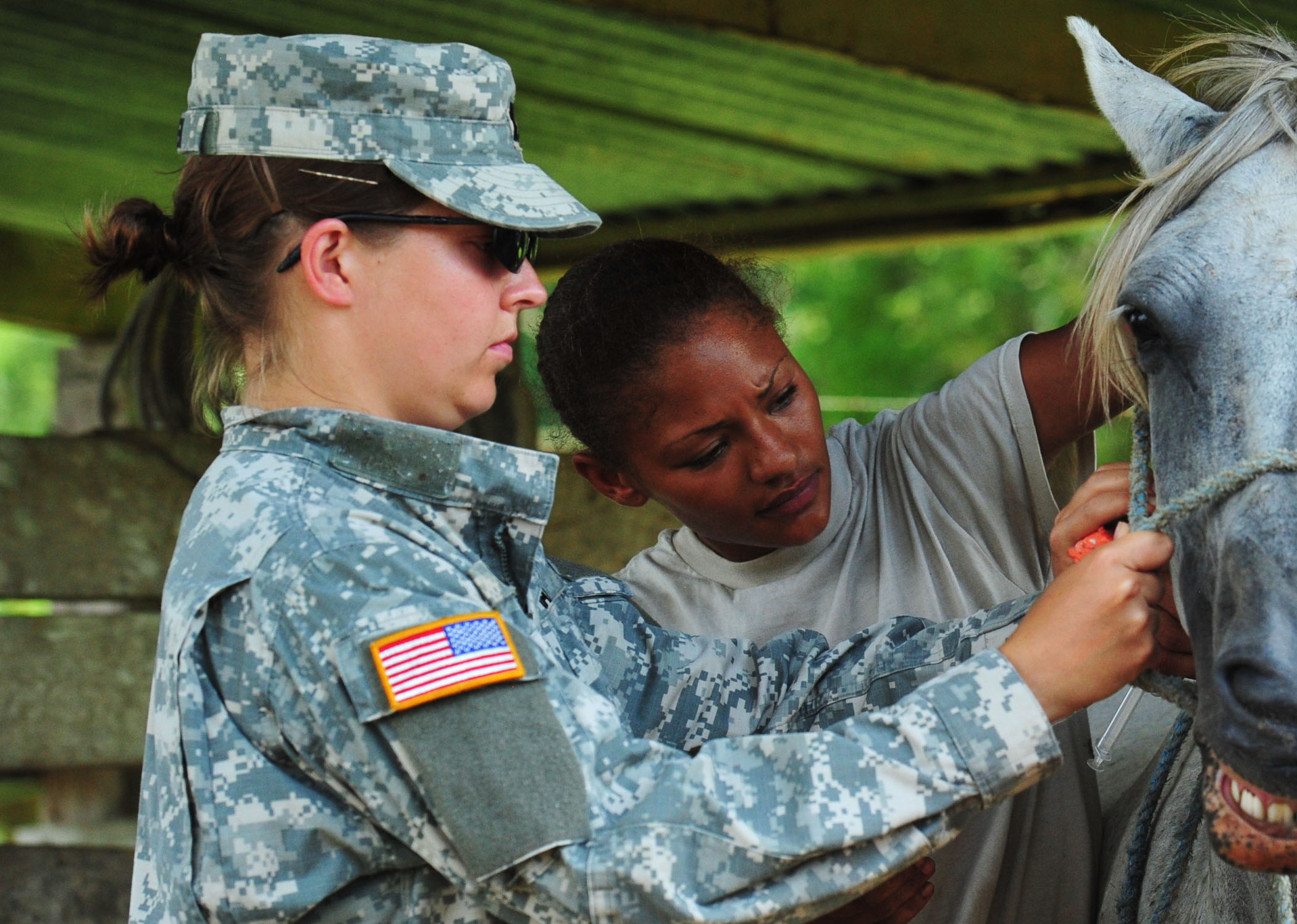 File:US Navy 100822-N-1531D-100 Army Capt. Rebecca Carden, left ...