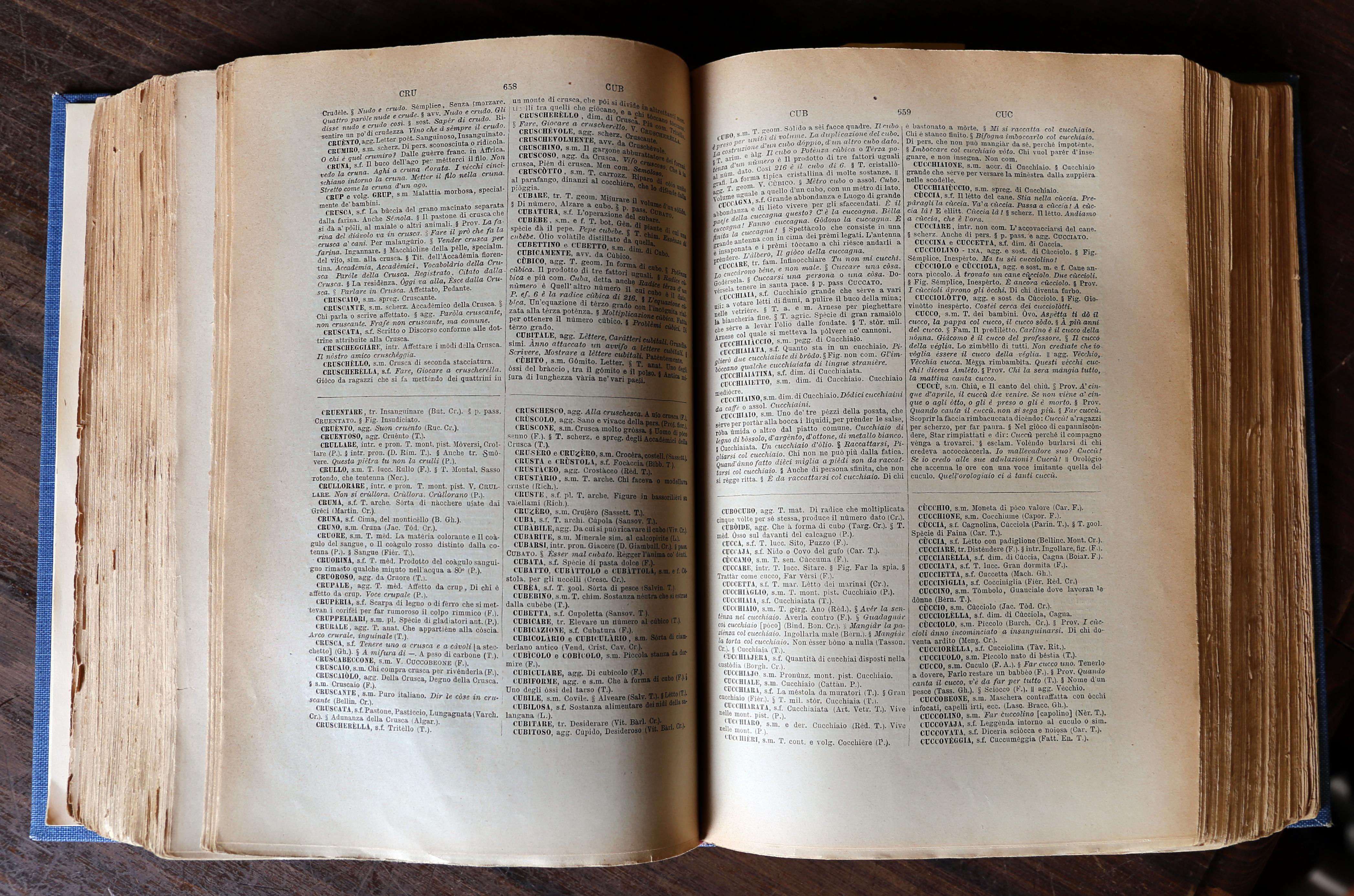 शब्दकोश - विकिपीडिया