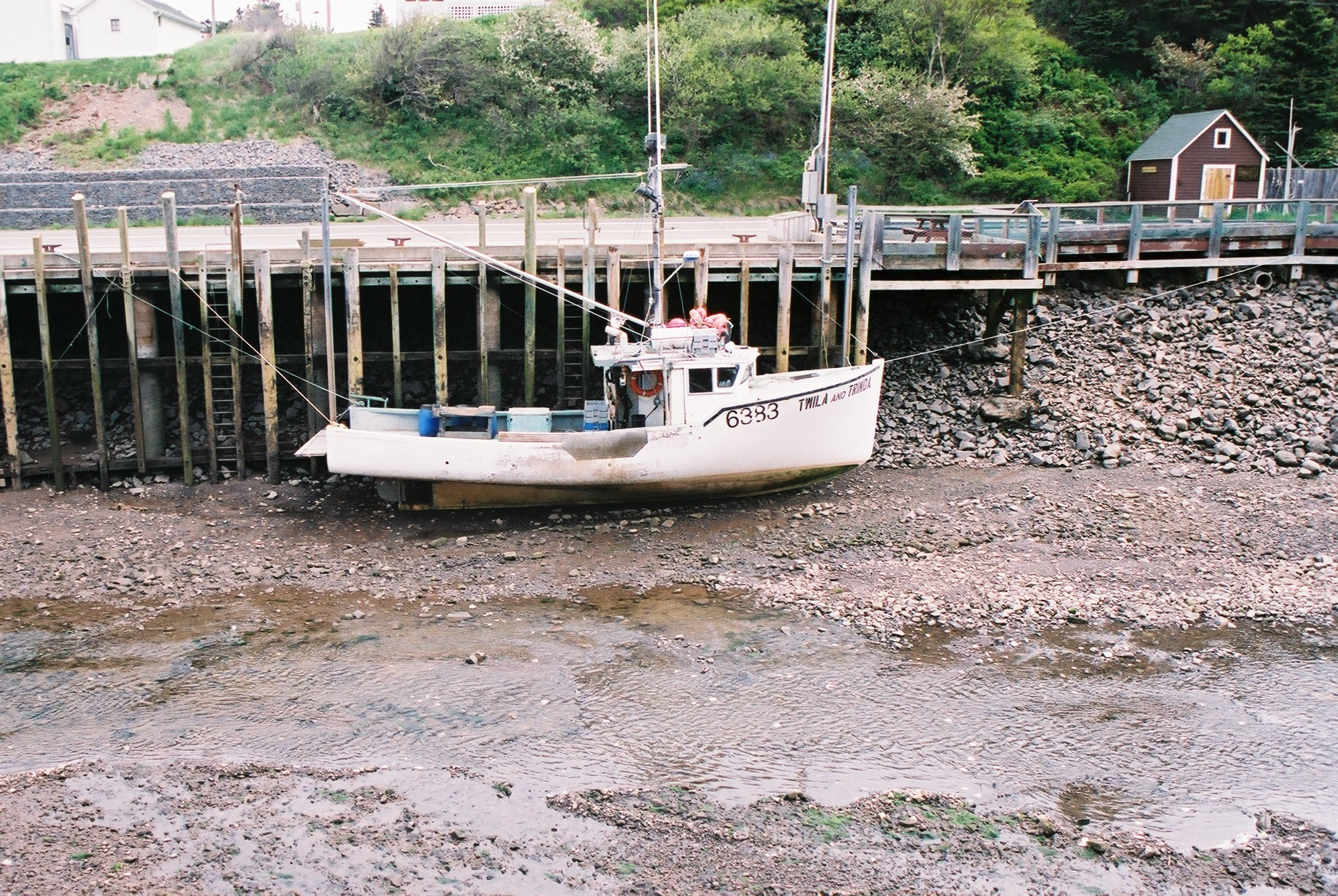 The same white boat at low tide and still tied to the dock.