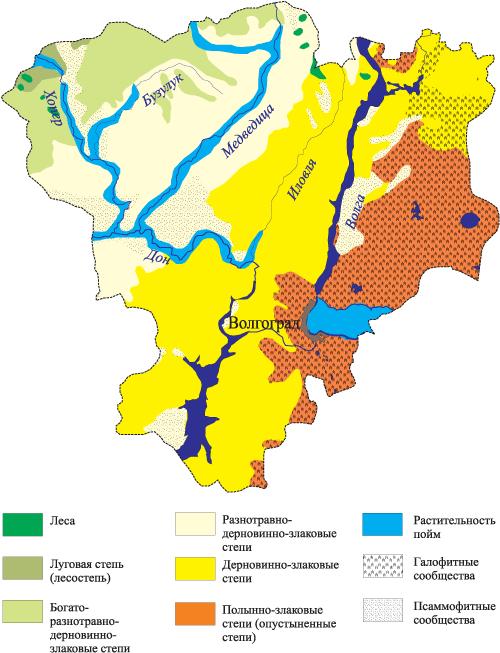 Охраняемые природные территории волгоградской области реферат 6925