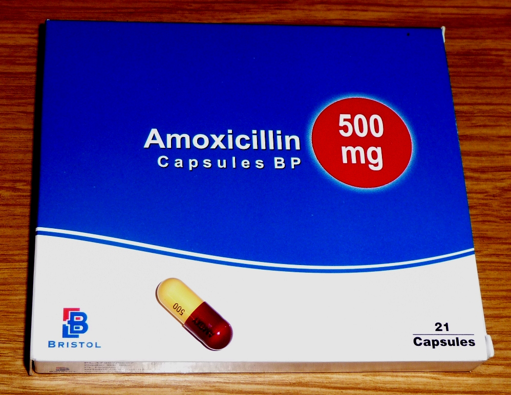 amoxicillin antibiotic used.jpg
