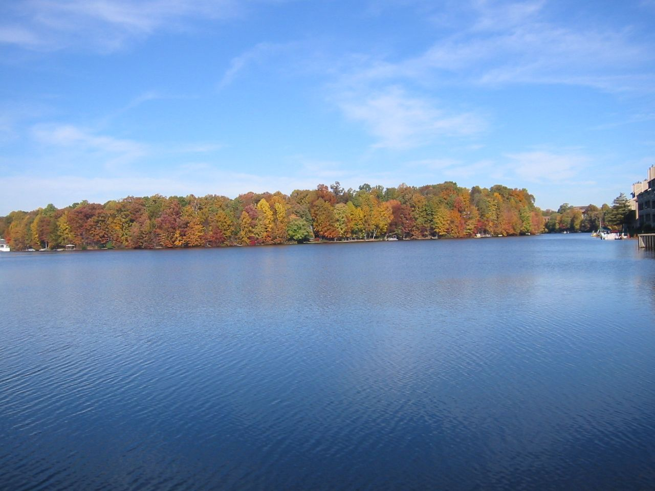 Lake Thoreau in Reston VA