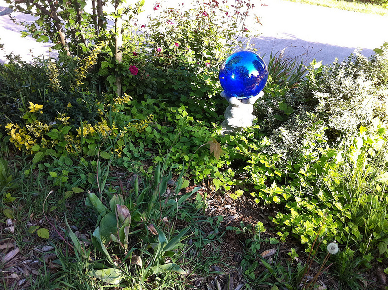 File:Blue Gazing Ball In Home Garden