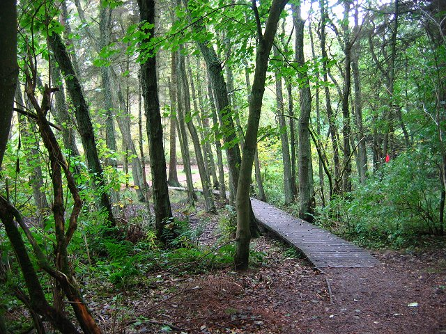 Camping Holidays In West Lothian 1