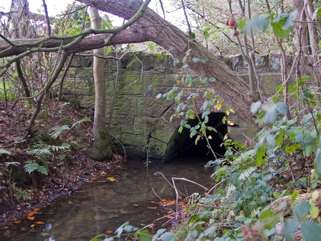 Bridge into Colemere Woods - geograph.org.uk - 1027477