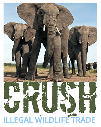 File:Crush Illegal Wildlife Trade logoWikimedia Commons