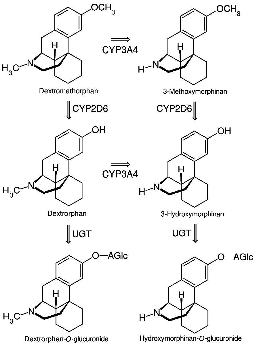 dextromethorphan wikiwand