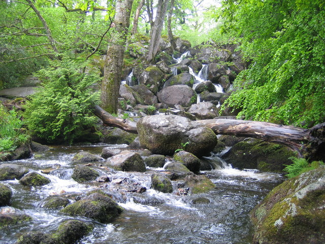 Dartmoor, Becky Falls - geograph.org.uk - 438831