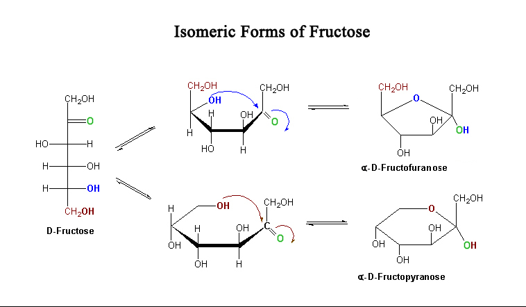 D Fructose Structure File:Fructose-isomers....