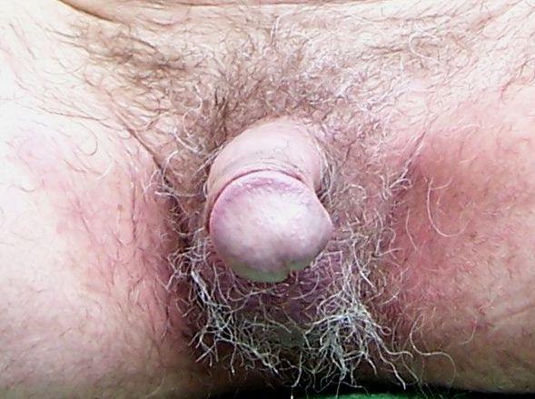 free photos of an erect penis feedback edict