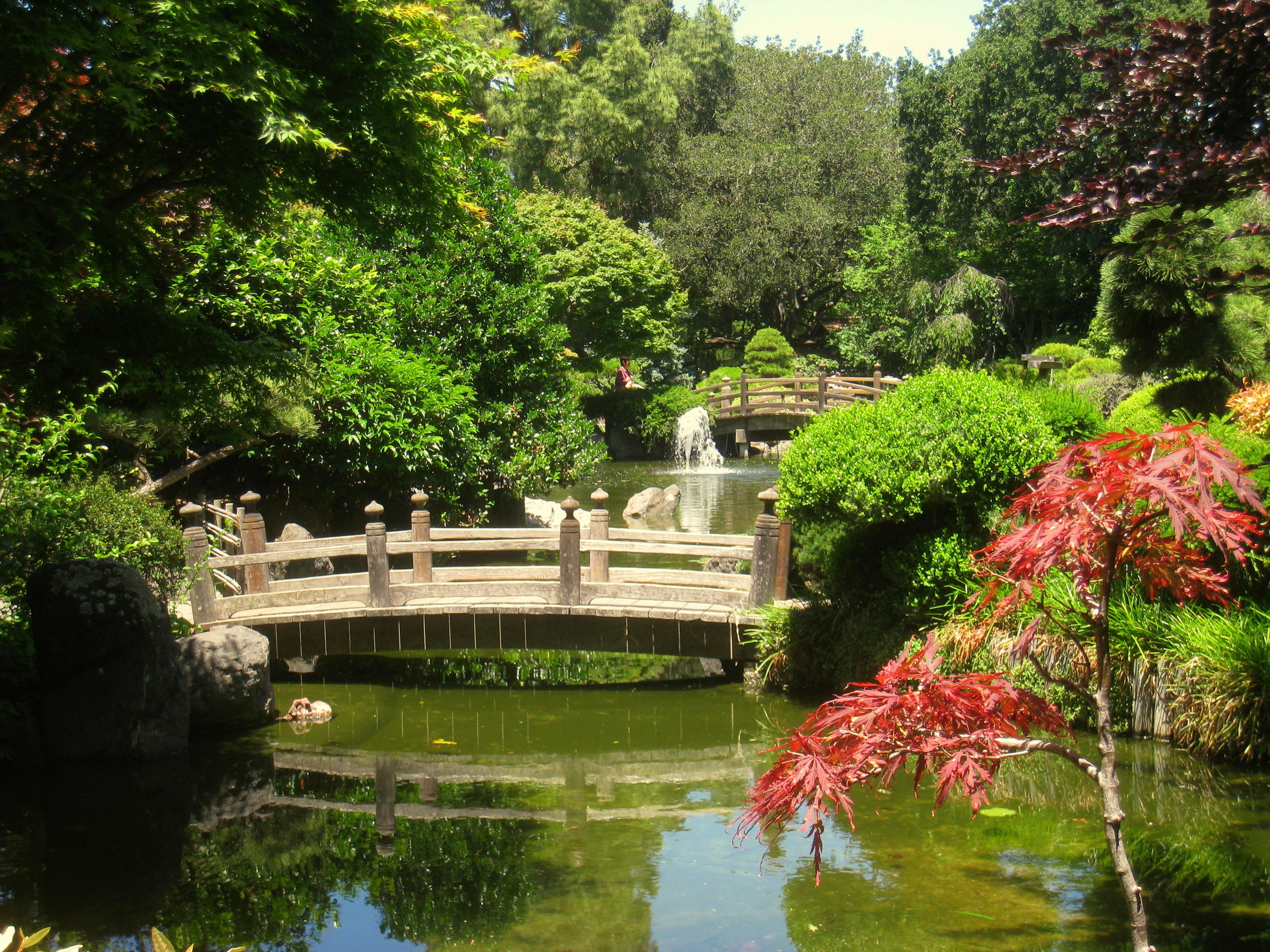 File Japanese Tea Garden San Mateo Ca Img 9111 Jpg