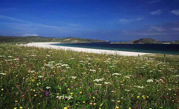 Machair - geograph.org.uk - 439770