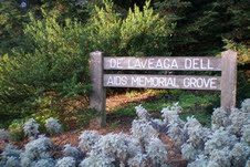National AIDS Memorial Grove wooden sign.jpg