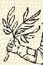 Olivaág (heraldika).PNG