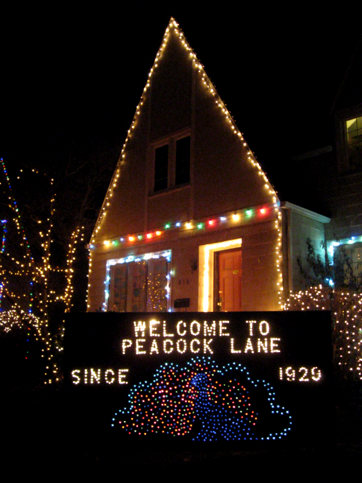 Peacock Lane Wikipedia