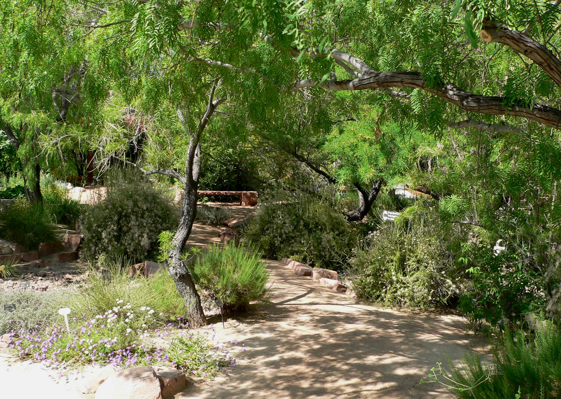 File:Springs Preserve Garden Path