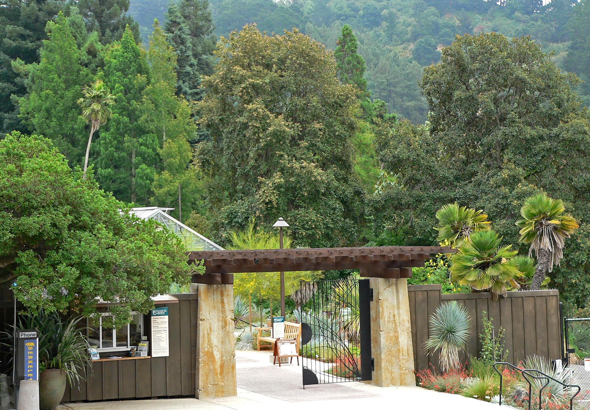Etonnant UCBG: The University Of California Botanical Garden Is A 34 Acre (13.7 Ha) Botanical  Garden Located On The University Of California, Berkeley Campuu2026