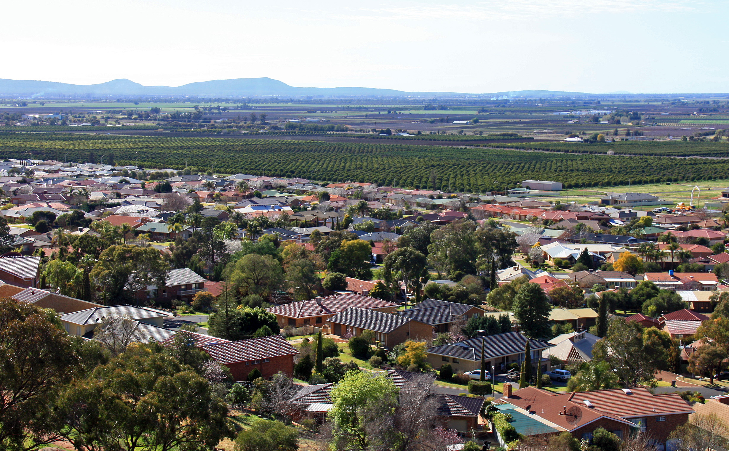 File:View over Griffith NSW 1 jpg - Wikimedia Commons