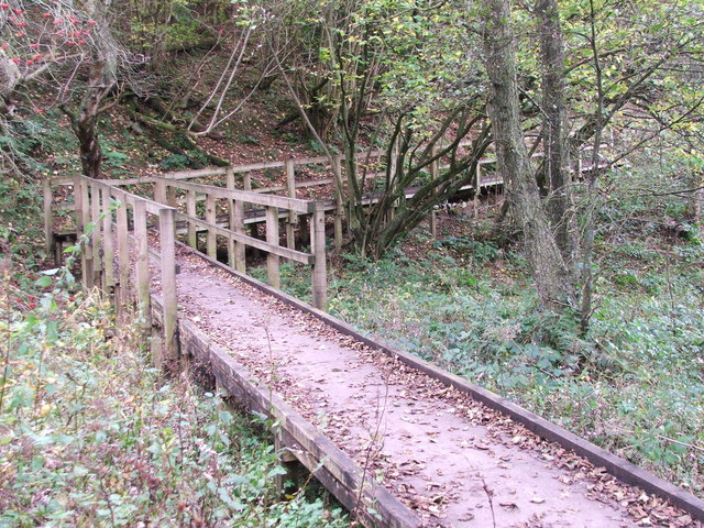 Wooden walkway at Staindale Lake, Dalby Forest - geograph.org.uk - 1561494