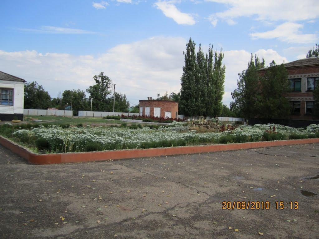 Красносельская городская больница