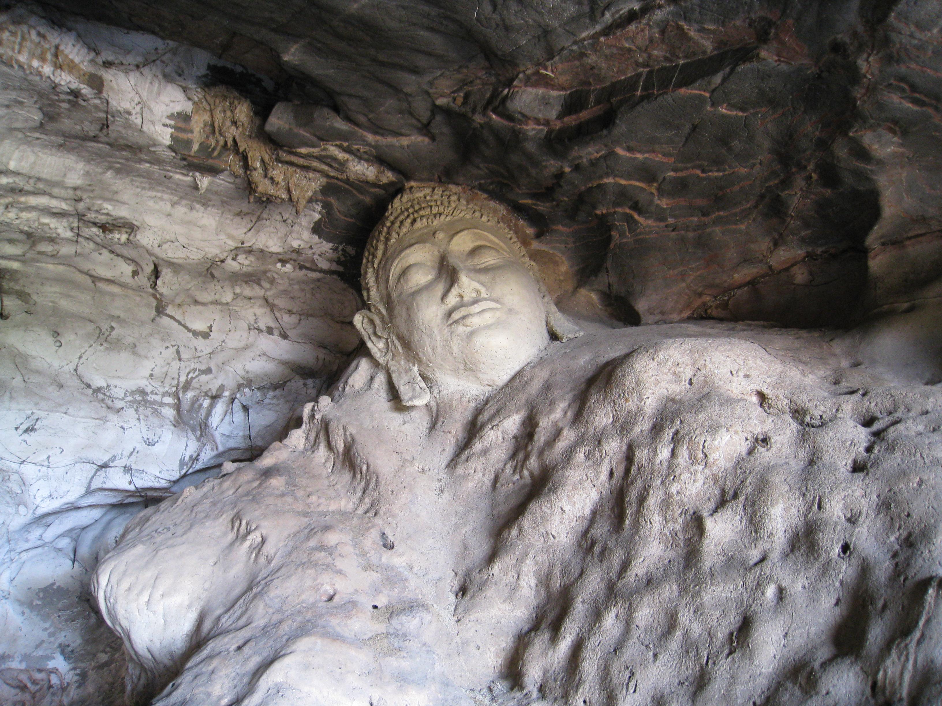 Image Result For Living Under A Rock