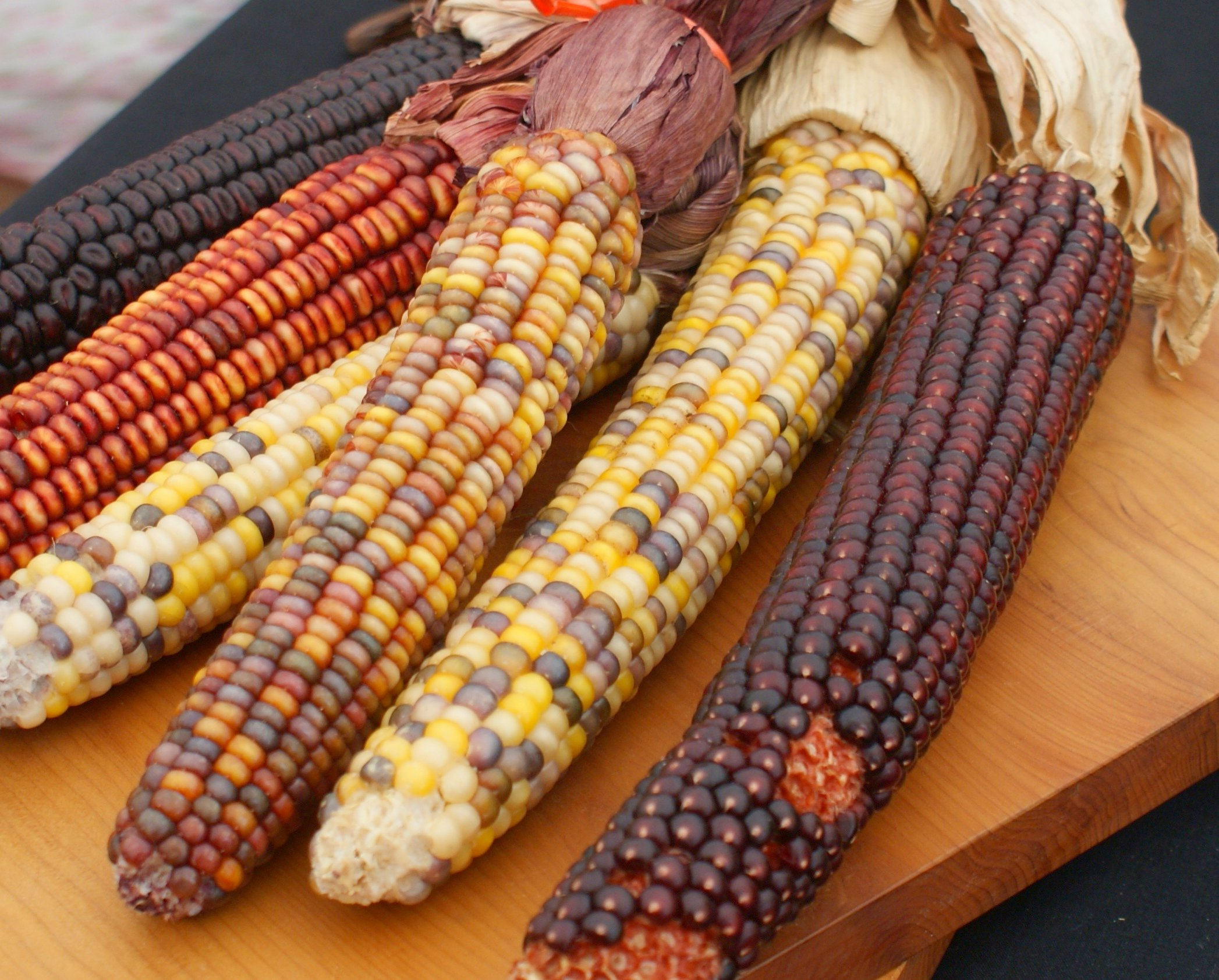 maize dating site Evidence of cultivation in peru has been found dating to about 6700 years ago the second wave,  maize is preferred in formal, scientific,.