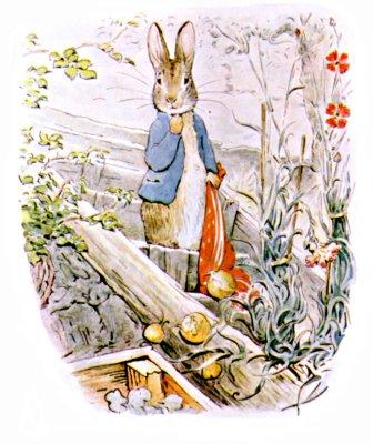 Le héros Jeannot Lapin dans Le Conte de Jeannot Lapin, de Beatrix Potter.