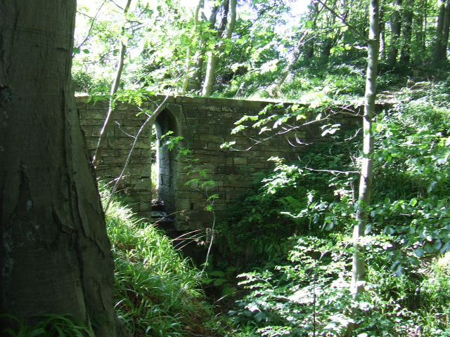 Bridge over stream - geograph.org.uk - 535572