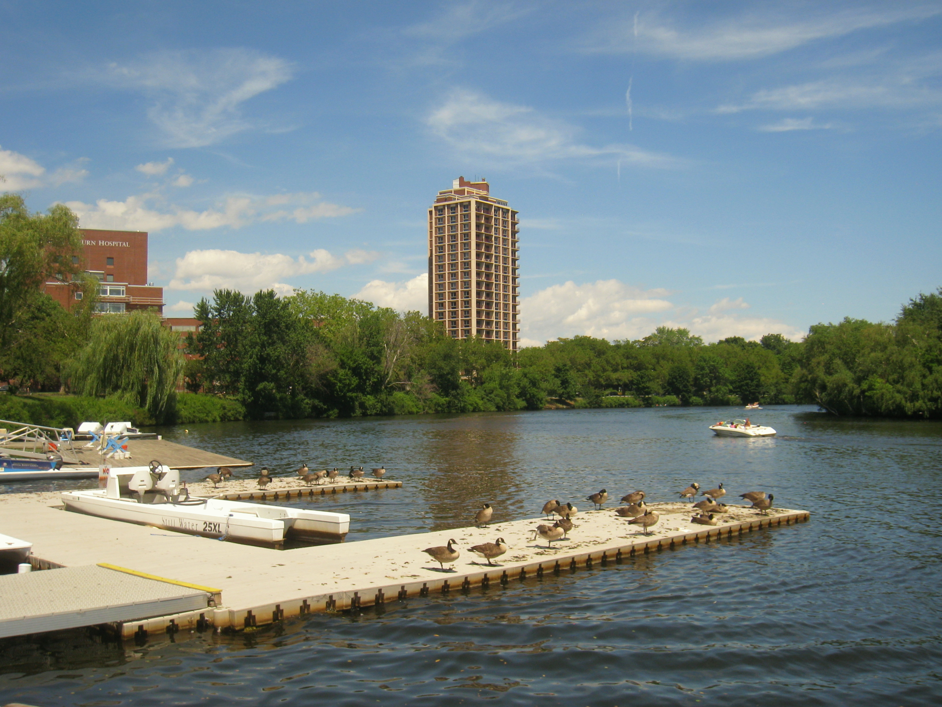 Efforts to clean up the Charles will be accelerated under a new settlement.
