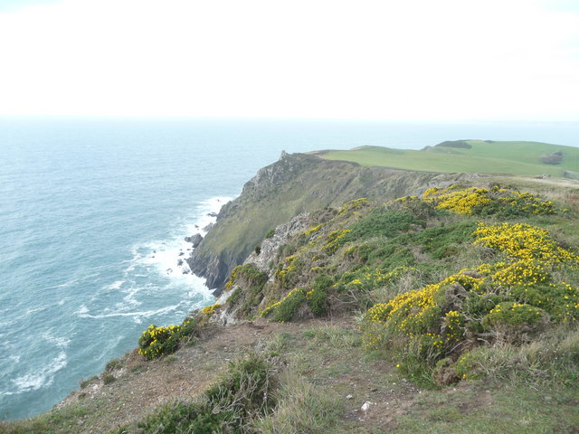 Cliffs on Bolberry Down - geograph.org.uk - 1562435