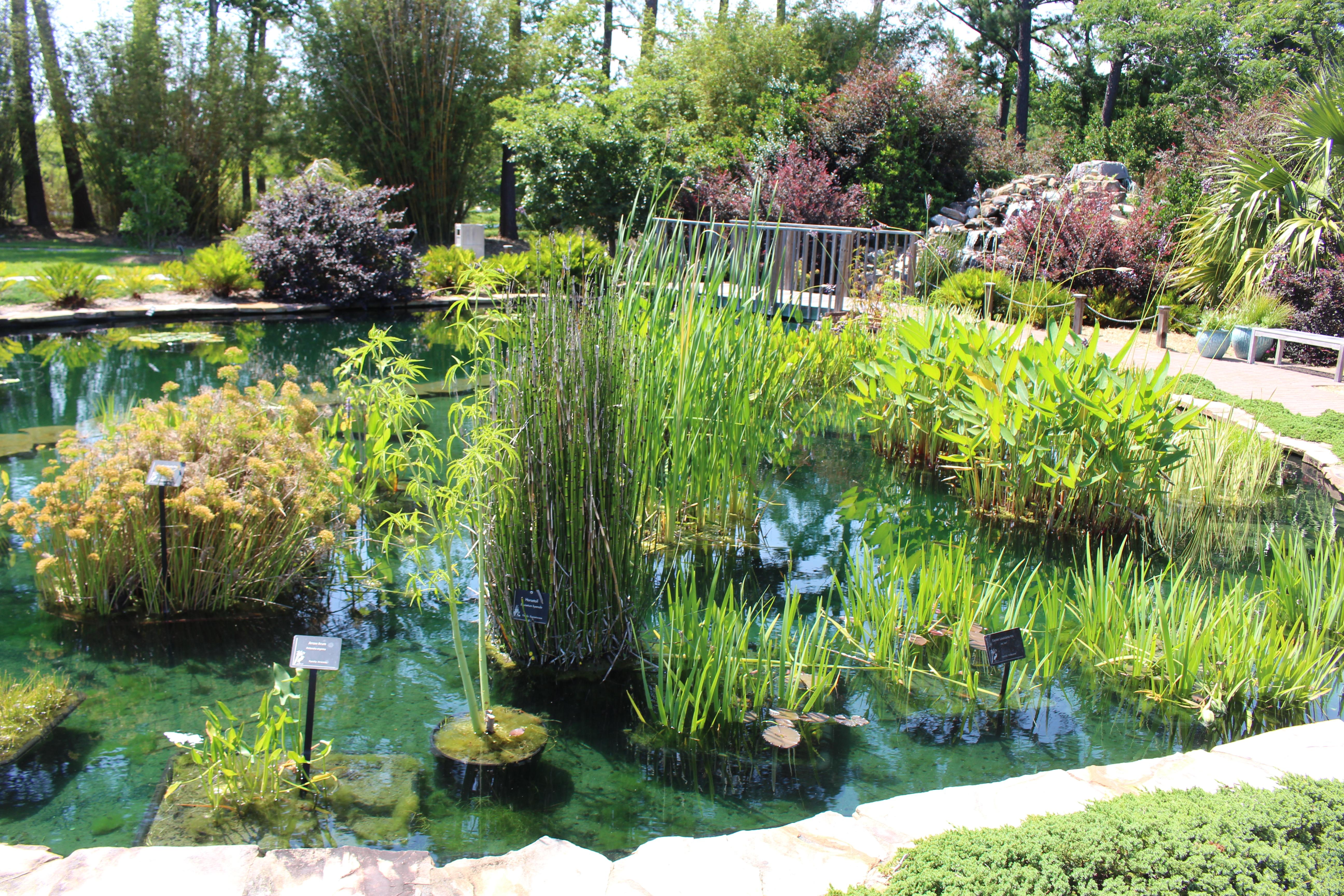 Coastal Botanical Gardens Ga Garden Ftempo