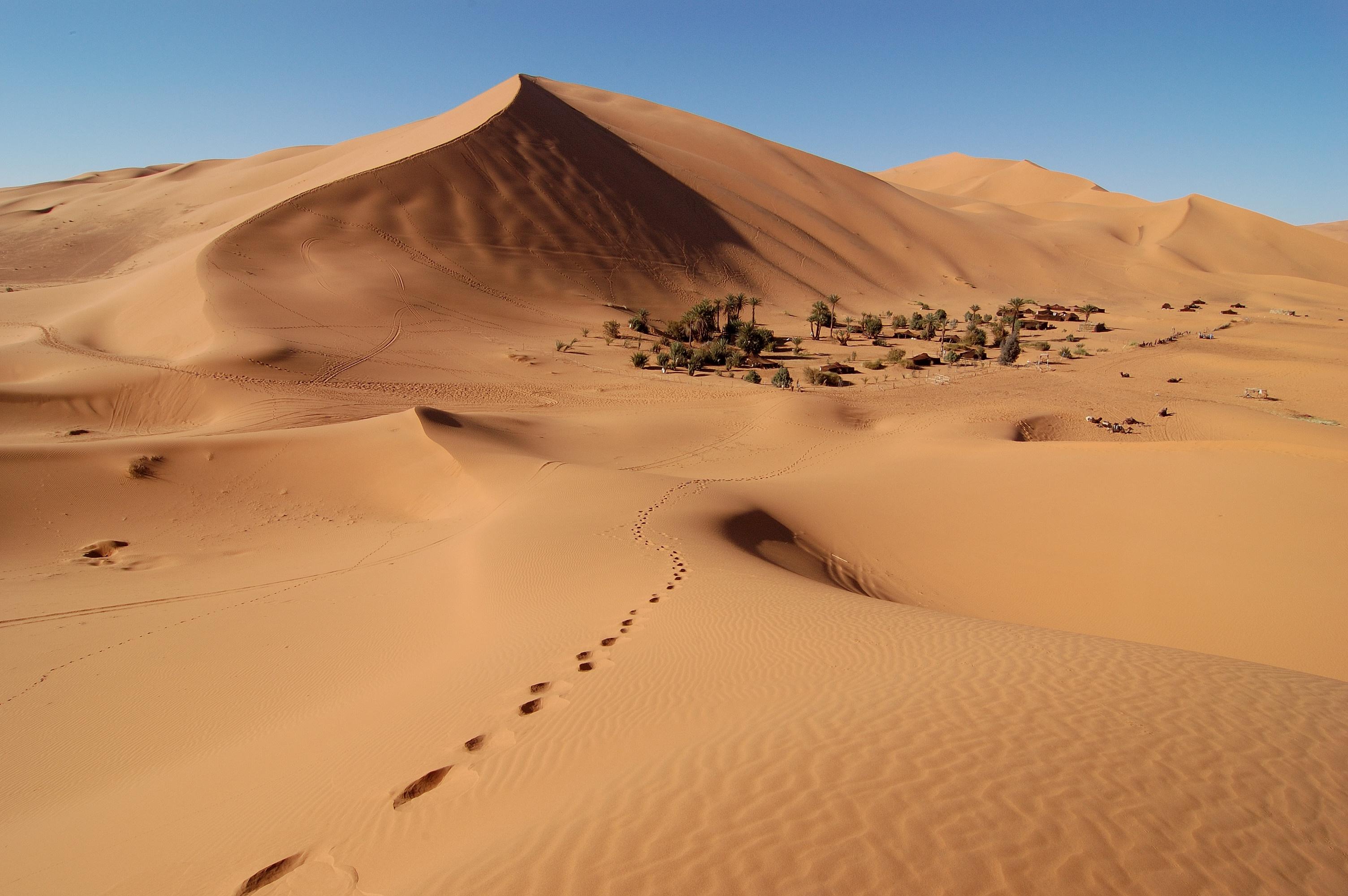 Erg Chebbi Maroc.jpg