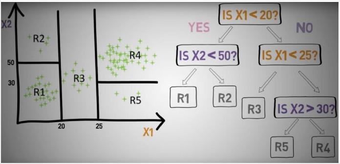 Schéma d'exemple d'application d'un algorithme de random forest par l'équipe Octopus